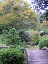 日本庭園(はままつフラワーパーク)