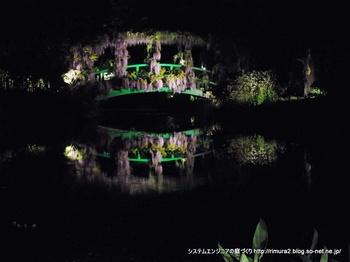 花美の庭。太鼓橋