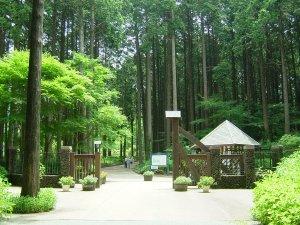 秩父宮記念公園(中門)