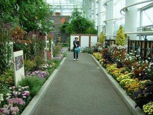 クリスタルパレス・芸術の庭展(はままつフラワーパーク)
